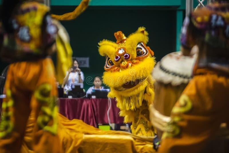 Lion Dance stock foto