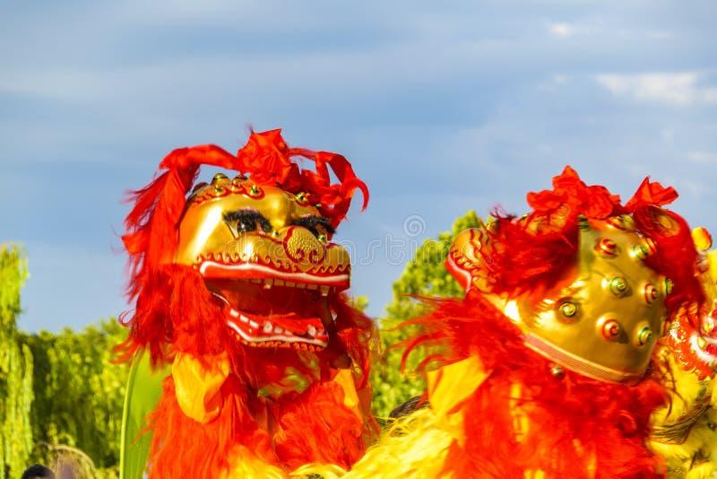 Lion Dance, ano novo chinês, Montevideo, Uruguai fotografia de stock