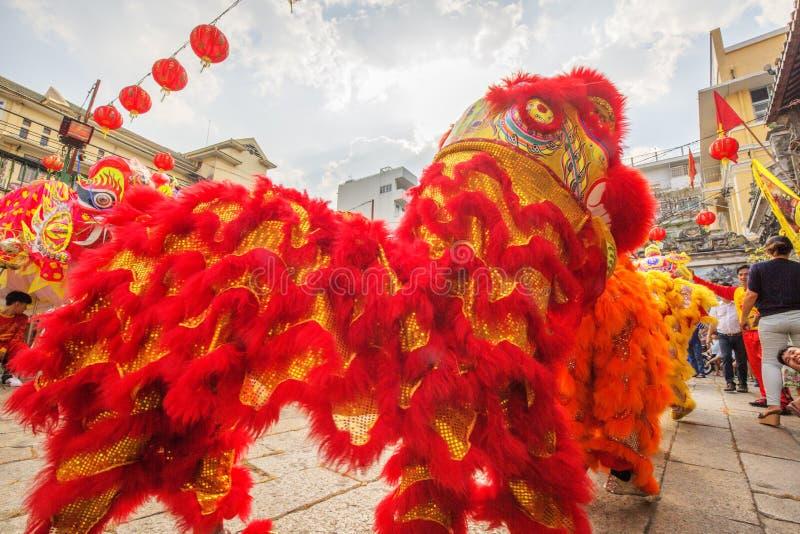 Lion Dance del sud a cerimonia di apertura dell'occhio, pagoda di signora Thien Hau, Vietnam fotografie stock