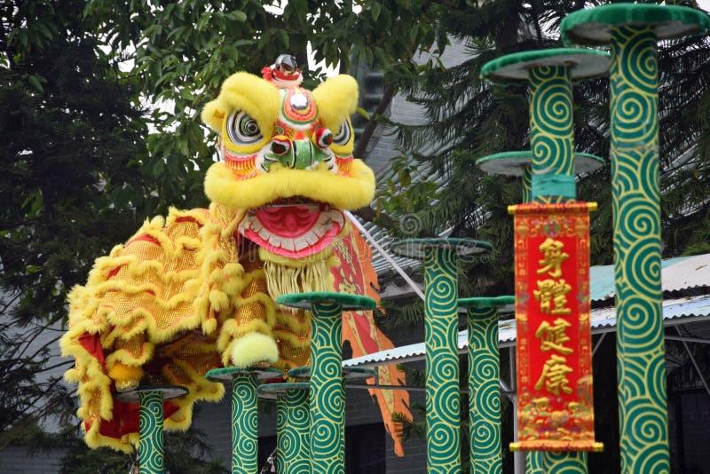 Lion Dance es una de las partes tradicionales de artes marciales chinos fotografía de archivo