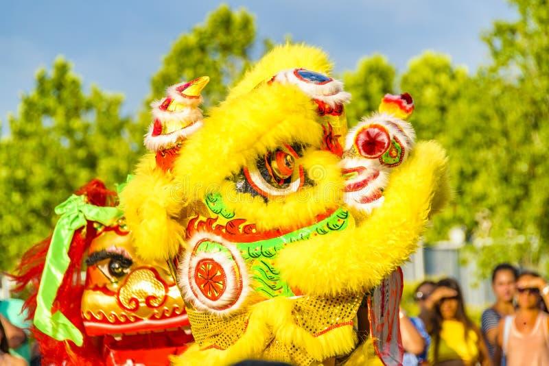 Lion Dance kinesiskt nytt år, Montevideo, Uruguay royaltyfria foton