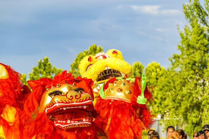 Lion Dance kinesiskt nytt år, Montevideo, Uruguay arkivfoto