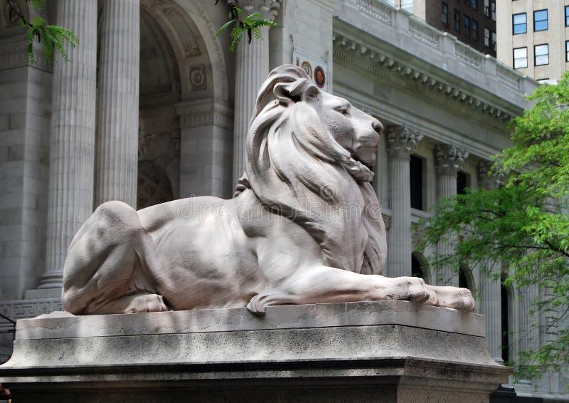 Lion de bibliothèque photo libre de droits