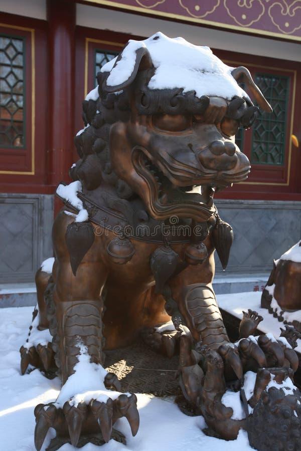 Lion de cuivre photos stock