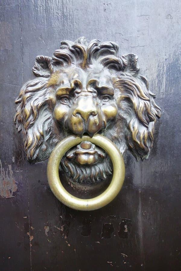 Lion de heurtoir de porte, Bruxelles, Belgique images libres de droits