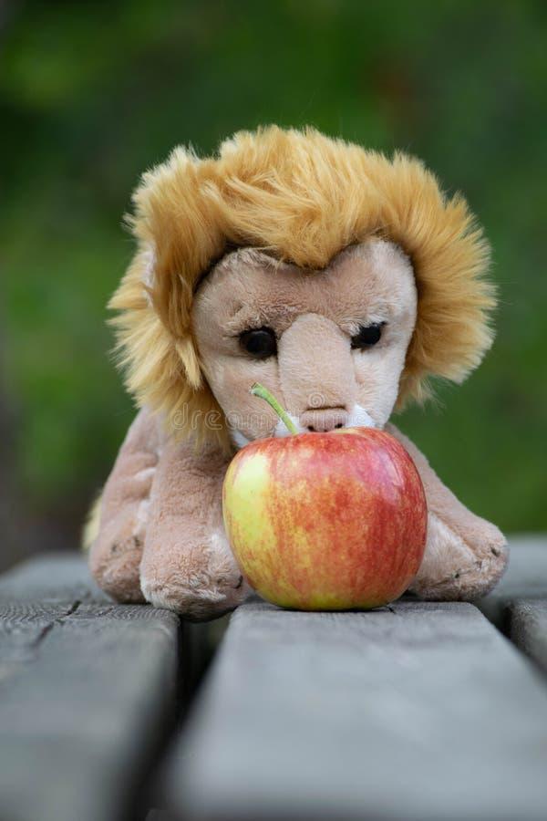 Lion de jouet mangeant une pomme image stock