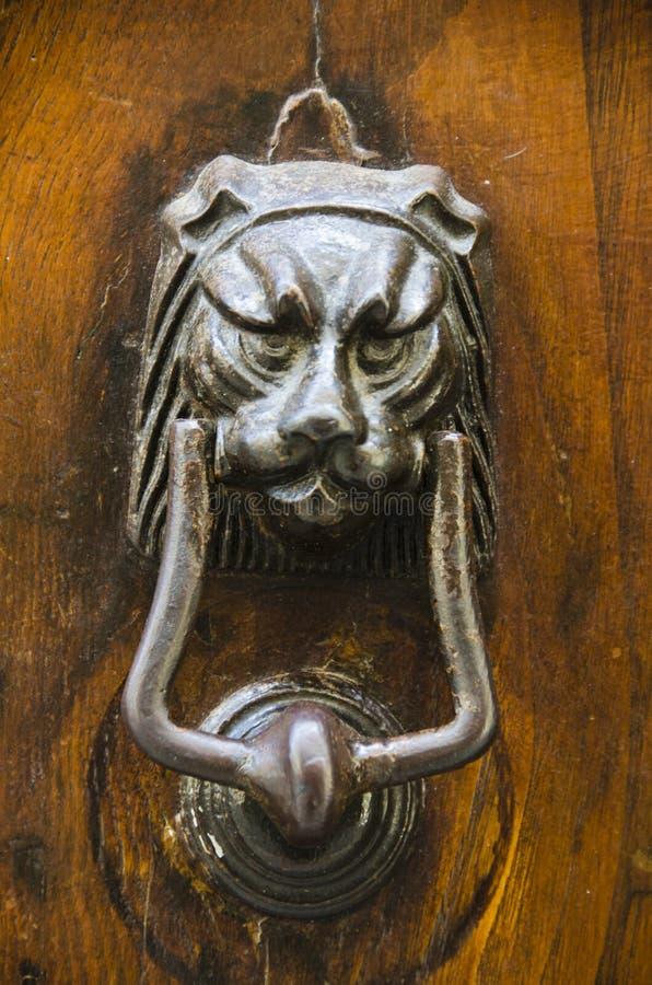 Lion Door Knocker in Cortona, Italy royalty free stock photos