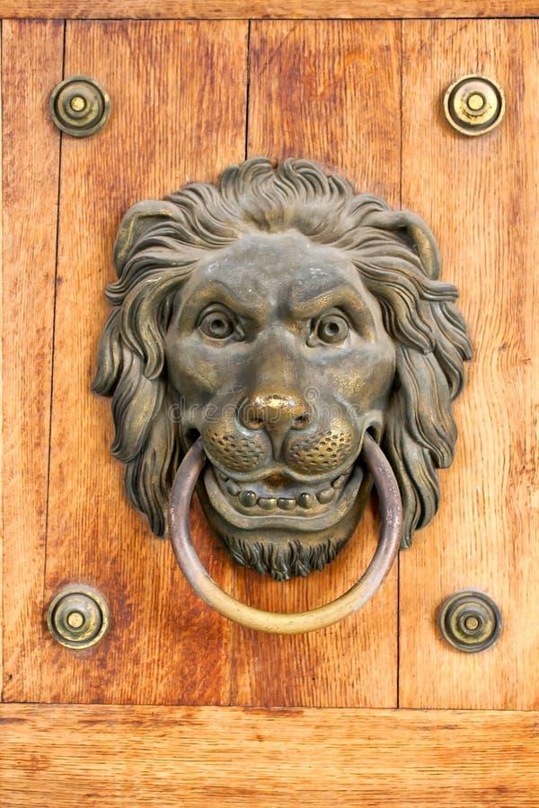 Lion door nob royalty free stock images