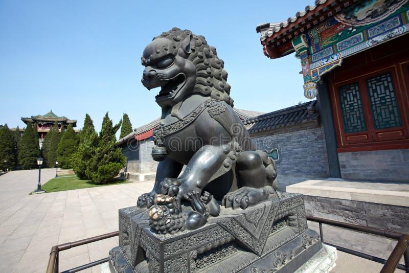 Lion en bronze photos stock