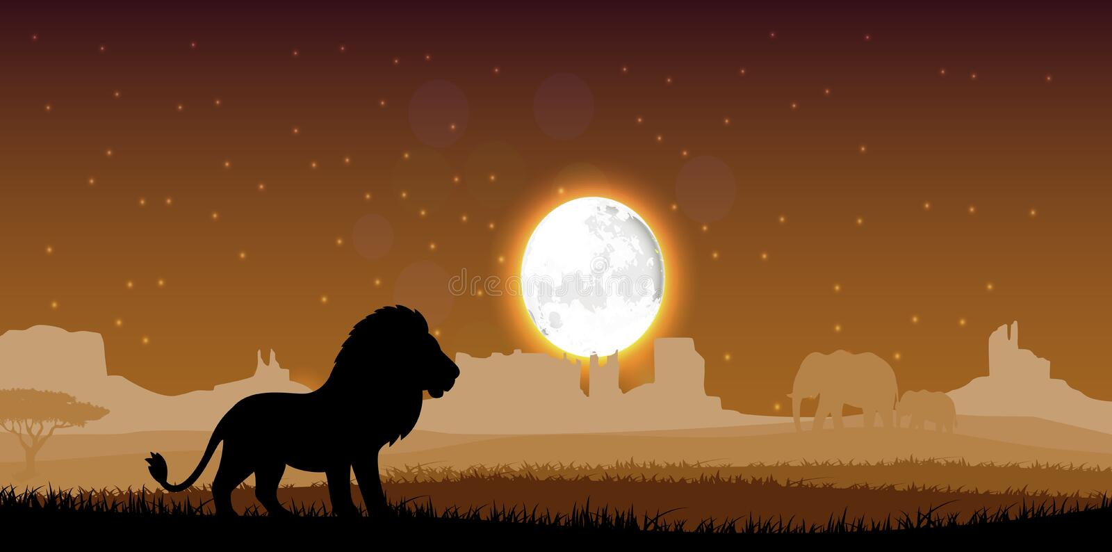 Lion in the evening. Illustration of Lion in the evening vector illustration