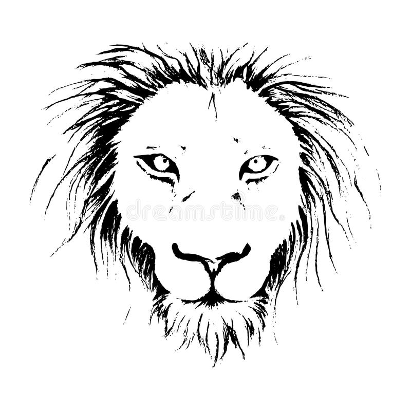 Line Drawing Lion Face : Lion face drawing illustration in black and white line art