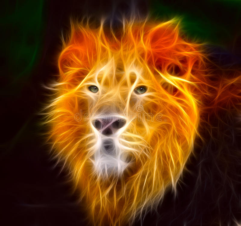 Lion in flames stock illustration