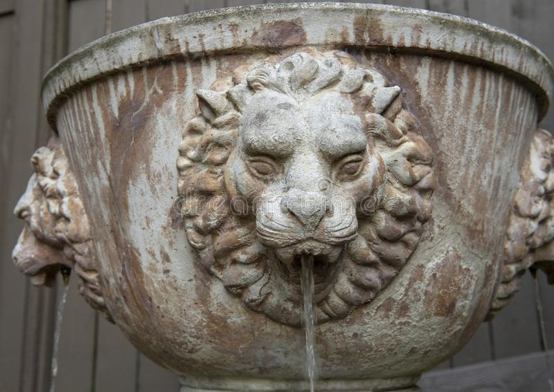 Lion fountain with water stream from lion`s mouth, Seattle Washington stock images