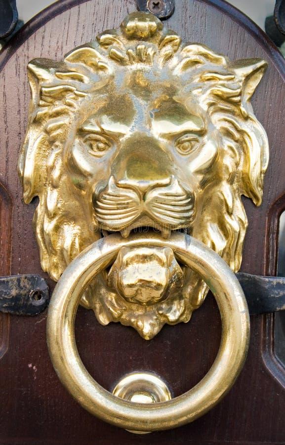 Lion Head Stock Photo Image Of Entrance Decoration Knob