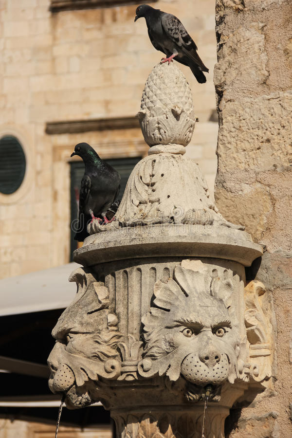 Lion head fountain. Dubrovnik. Croatia. Detail of a small lion head fountain at Gundulic square. Dubrovnik. Croatia stock image