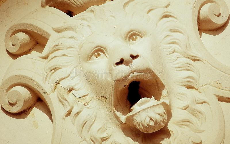 Lion Head royalty free stock photo