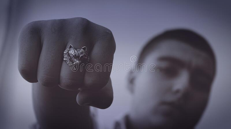 Lion head ring royalty free stock photo