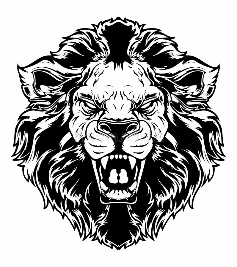 Lion head. Vector illustration of black and white lion head with anger expression vector illustration