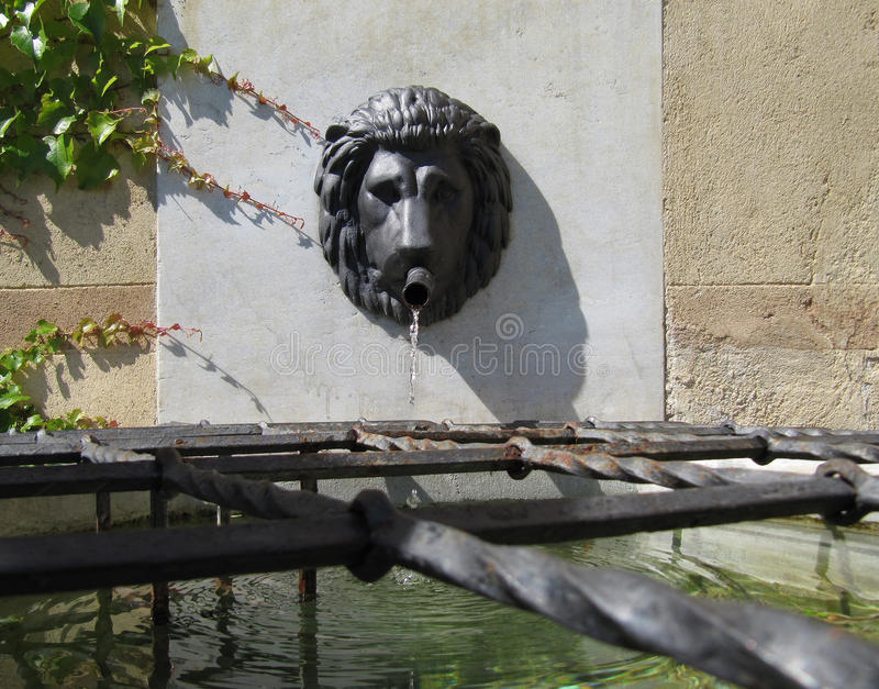 Lion Head Wall Water Fountain stock photography