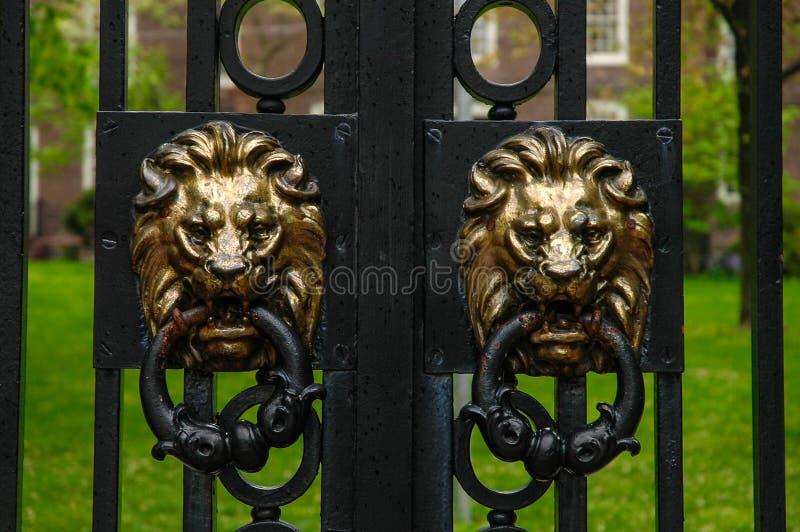 Lion Heads en las puertas principales de Brown University fotografía de archivo libre de regalías