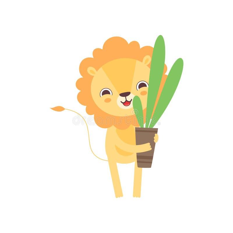 Lion Holding Flower Pot sveglio con la pianta da appartamento, illustrazione animale africana divertente di vettore del personagg illustrazione vettoriale