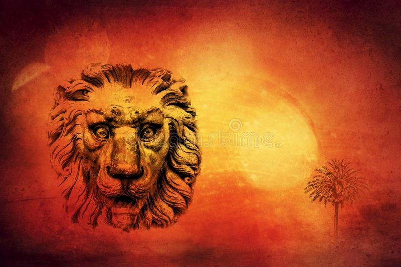 Lion in hot desert concept royalty free stock images