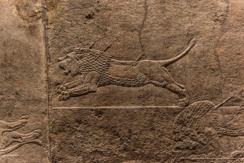 Lion Hunt real, forma de arte Assyrian 645 - 635 BC imagem de stock