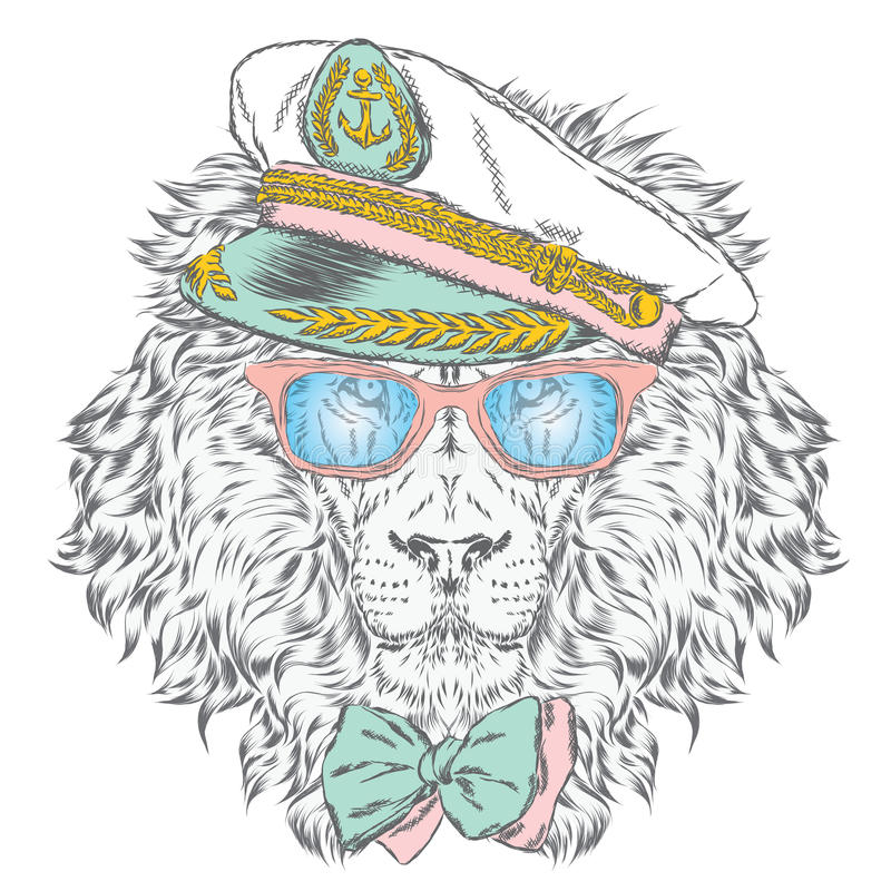 Free Lion In The Captain S Cap. Vector Illustration. Royalty Free Stock Photo - 76621215