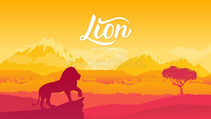 Lion King Sunset Stock Illustrations 70 Lion King Sunset