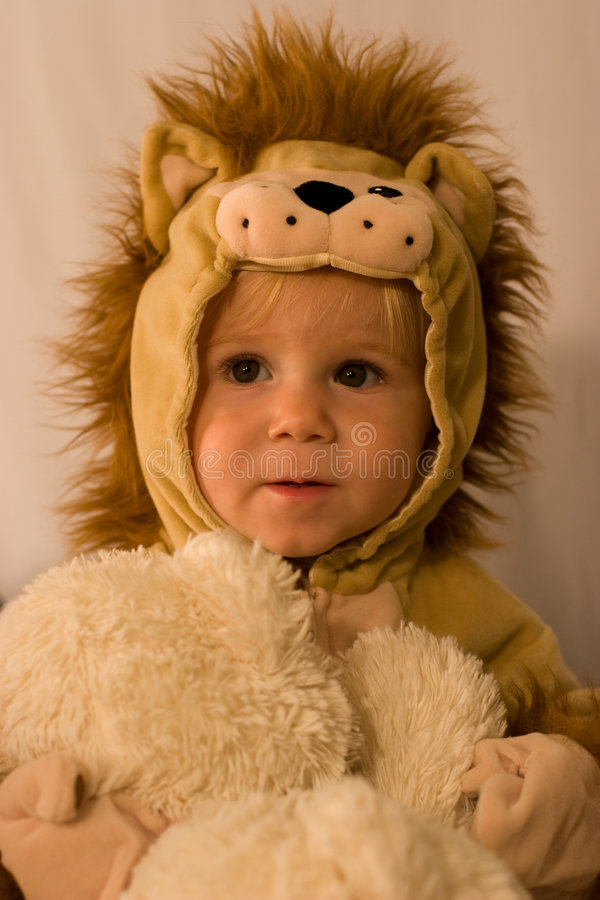 lion little royaltyfri foto