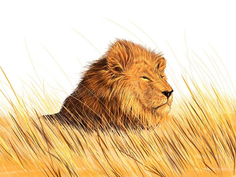 Download Lion stock vector. Illustration of hunter, carnivore - 33027917