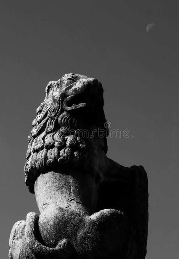 The lion and the moon. Shot in black and white, detail on an sculpture representing a lion with a shield placed on the garden of an historic church, set in Raval royalty free stock photography