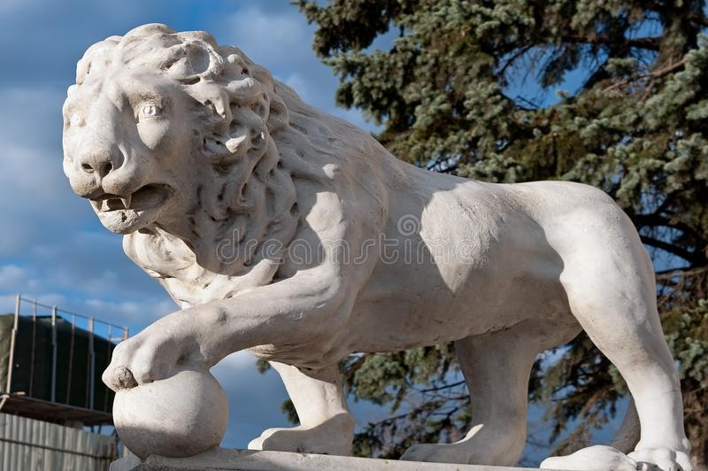 Lion near the Vorontsov palace in Odesa, Ukraine. Lion traditional sculptures near the Vorontsov palace in Odesa, Ukraine royalty free stock image
