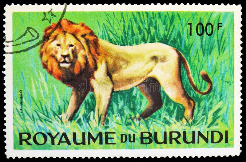 Lion (Panthera leo), Animals serie, circa 1964. MOSCOW, RUSSIA - MAY 25, 2019: Postage stamp printed in Burundi shows Lion (Panthera leo), Animals serie, circa stock photo
