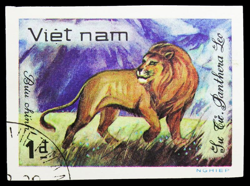 Lion (Panthera leo), World wild animals serie, circa 1981. MOSCOW, RUSSIA - SEPTEMBER 26, 2018: A stamp printed in Vietnam shows Lion (Panthera leo), World wild royalty free stock images