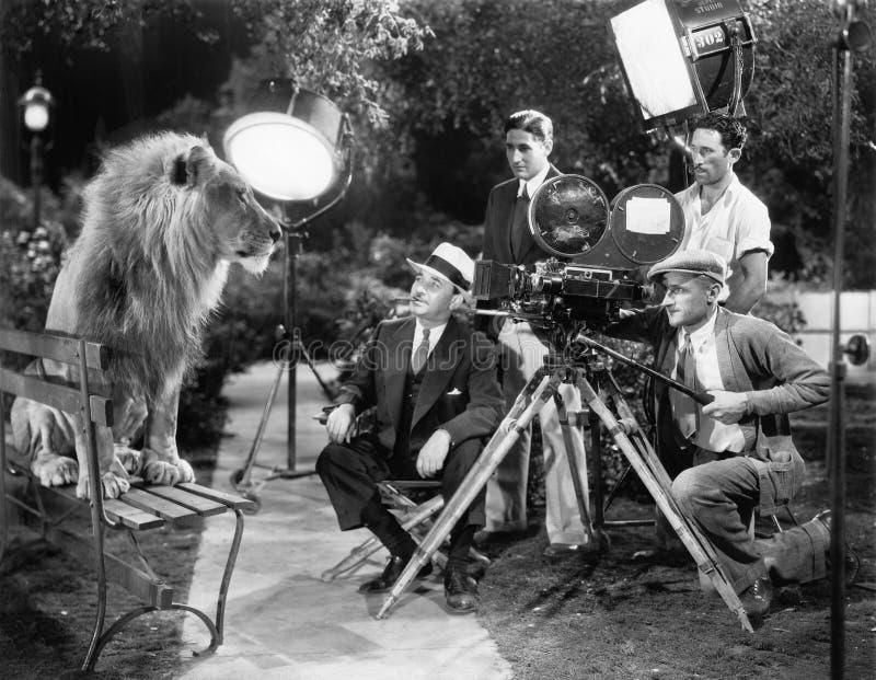 Lion posant pour l'appareil-photo (toutes les personnes représentées ne sont pas plus long vivantes et aucun domaine n'existe Gar photo stock