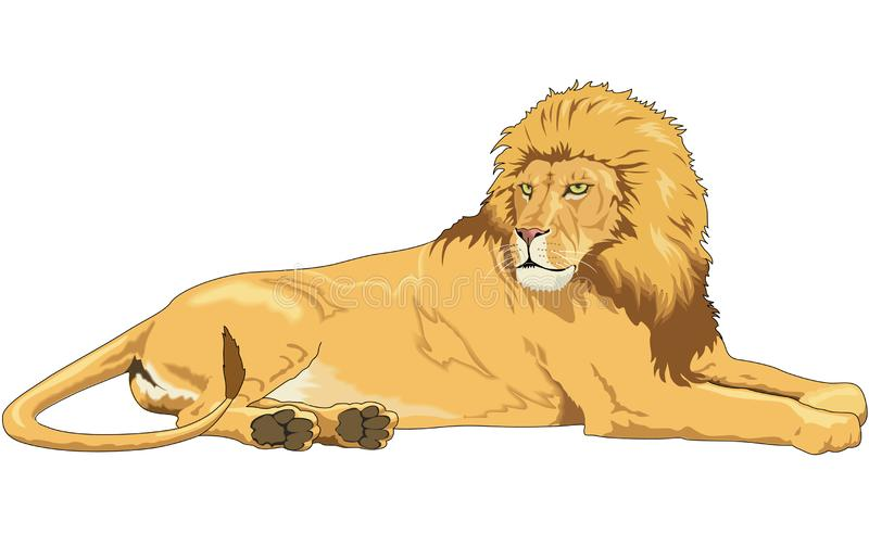 Lion Resting Illustration vector illustratie