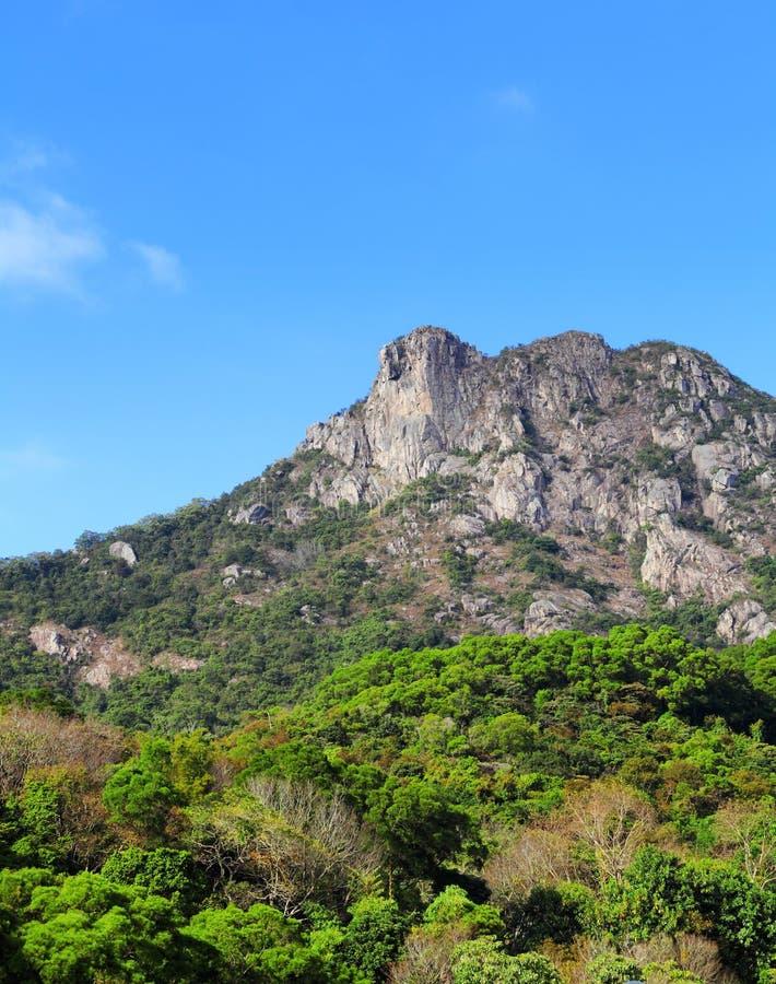 Download Lion Rock fotografering för bildbyråer. Bild av oklarhet - 27279551