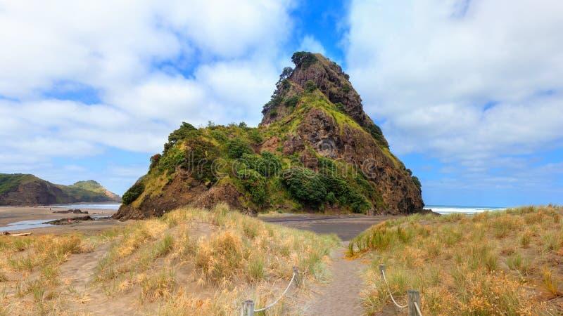 Lion Rock near Aucklad at Piha beach, New Zealand.  royalty free stock photo