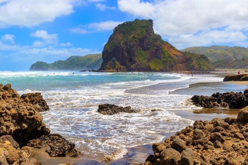 Lion Rock near Aucklad on Piha beach, New Zealand summer.  royalty free stock images
