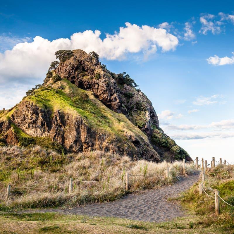 Lion Rock (Piha Beach, New Zealand). Lion Rock (Piha Beach, New Zealand north island royalty free stock image