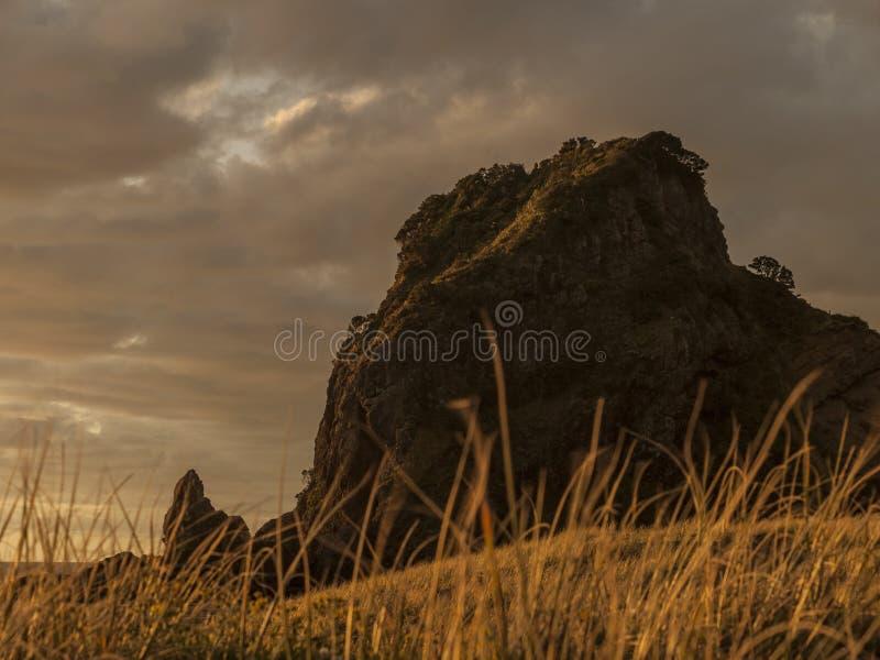 Lion Rock, Piha, NZ stock photos