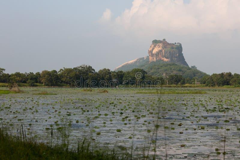 Lion Rock in Sigiriya in Sri Lanka stock fotografie