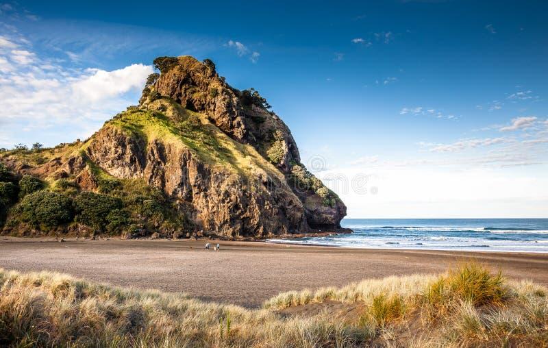 Lion Rock (spiaggia di Piha, Nuova Zelanda) immagini stock libere da diritti