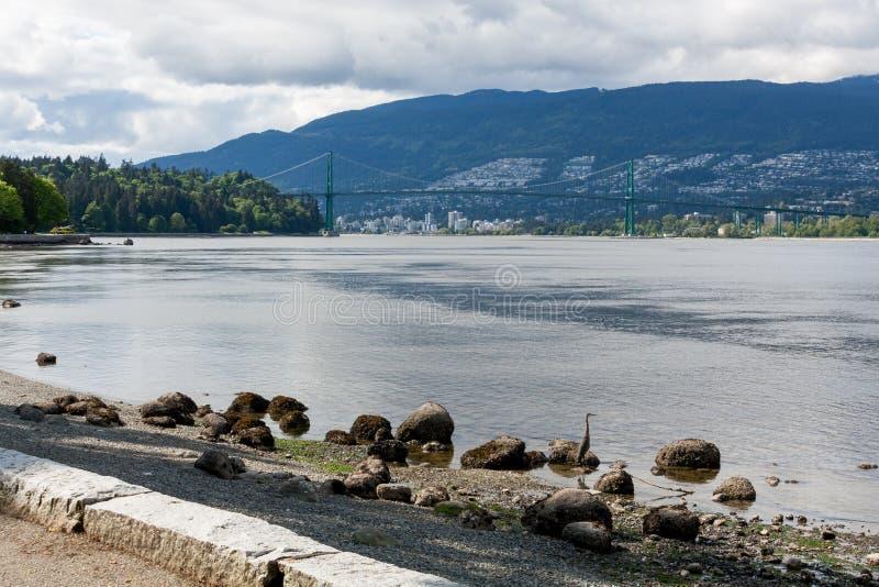 Download Lion's Gate Vancouver stock photo. Image of burrard, lions - 38340664