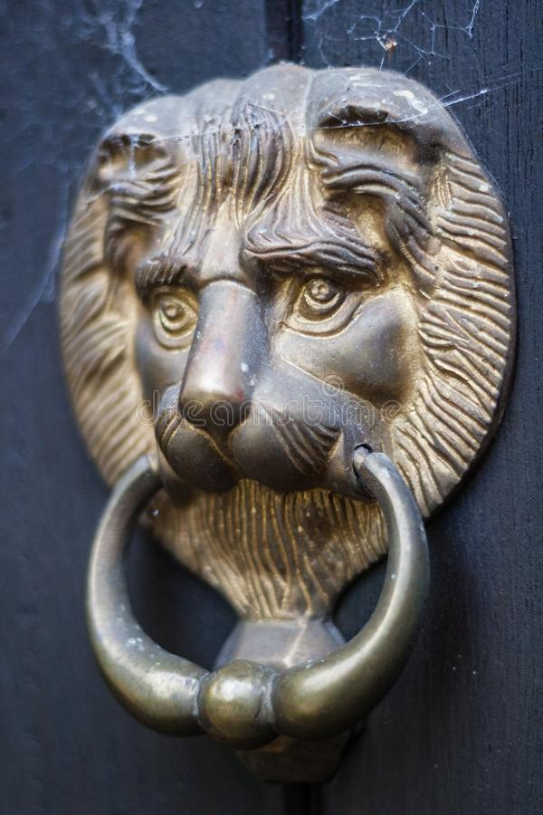 Lion`s Head Door Knocker with Cobwebs royalty free stock photo