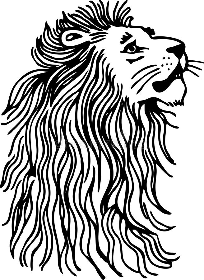 Simple Black And White Line Art : Lion royalty free stock photos image