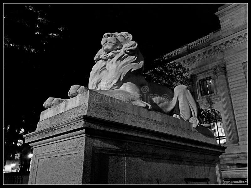 Lion sombre photo stock