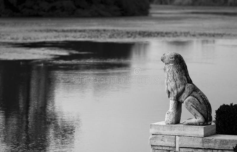 Lion statue. At Mogosoaia palace near Bucharest in black and white royalty free stock image