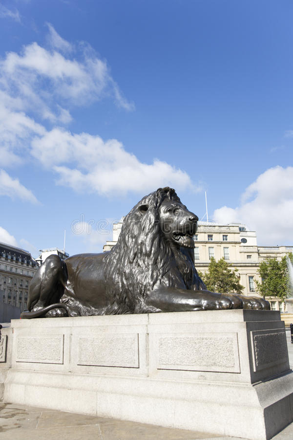 Lion statue in Trafalgar Square. The four lion statues surrounding Nelson's column in Trafalgar Square are one of the most famous places for tourists stock photography
